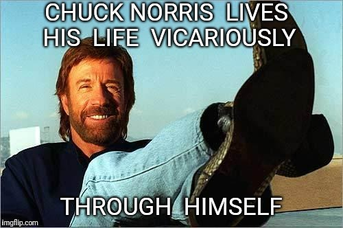 Chuck Norris Says | CHUCK NORRIS  LIVES HIS  LIFE  VICARIOUSLY THROUGH  HIMSELF | image tagged in chuck norris says,life,chuck norris | made w/ Imgflip meme maker
