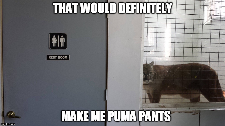 Rest (In Peace) room | THAT WOULD DEFINITELY MAKE ME PUMA PANTS | image tagged in restroom,puns,funny,memes | made w/ Imgflip meme maker