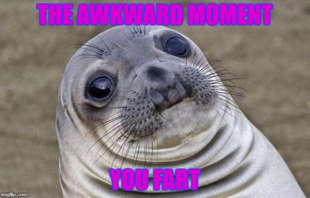 Awkward Moment Sealion Meme | THE AWKWARD MOMENT YOU FART | image tagged in memes,awkward moment sealion | made w/ Imgflip meme maker
