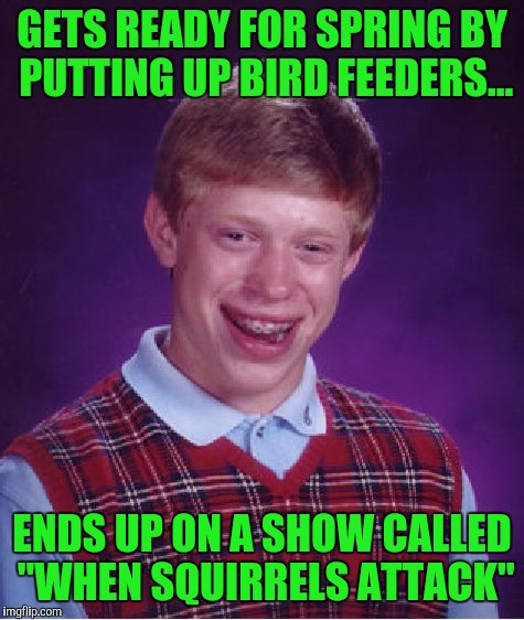 "Bad Luck Brian Meme | GETS READY FOR SPRING BY PUTTING UP BIRD FEEDERS... ENDS UP ON A SHOW CALLED ""WHEN SQUIRRELS ATTACK"" 