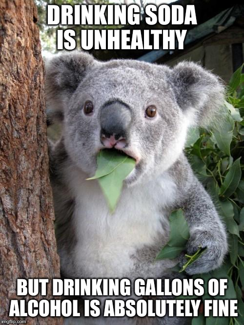 Surprised Koala Meme | DRINKING SODA IS UNHEALTHY BUT DRINKING GALLONS OF ALCOHOL IS ABSOLUTELY FINE | image tagged in memes,surprised koala | made w/ Imgflip meme maker