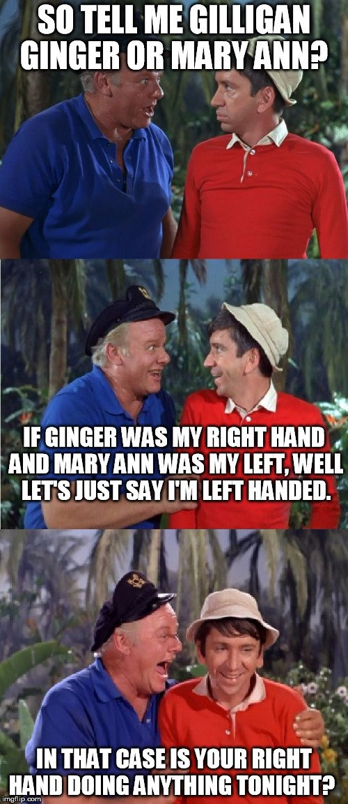 Gilligan Bad Pun | SO TELL ME GILLIGAN GINGER OR MARY ANN? IN THAT CASE IS YOUR RIGHT HAND DOING ANYTHING TONIGHT? IF GINGER WAS MY RIGHT HAND AND MARY ANN WAS | image tagged in gilligan bad pun | made w/ Imgflip meme maker