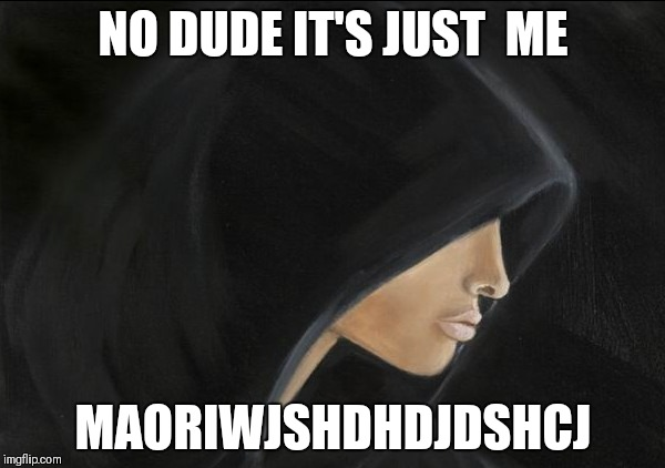 NO DUDE IT'S JUST  ME MAORIWJSHDHDJDSHCJ | made w/ Imgflip meme maker