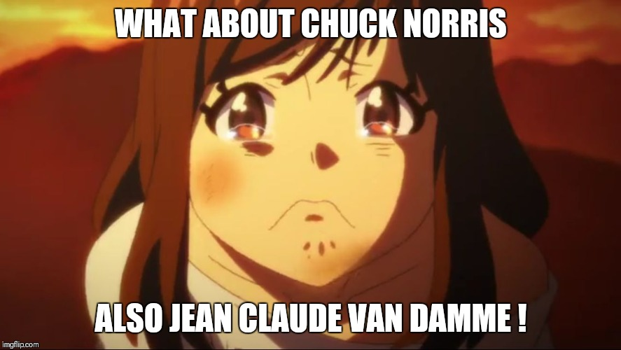 WHAT ABOUT CHUCK NORRIS ALSO JEAN CLAUDE VAN DAMME ! | made w/ Imgflip meme maker
