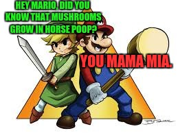 Mario realizes he has Epona to thank for half of his power-ups | HEY MARIO, DID YOU KNOW THAT MUSHROOMS GROW IN HORSE POOP? YOU MAMA MIA. | image tagged in mario,zelda,mushrooms | made w/ Imgflip meme maker