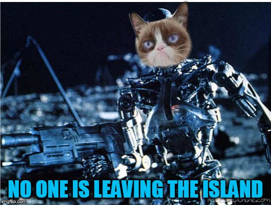grump cat terminator | NO ONE IS LEAVING THE ISLAND | image tagged in grump cat terminator | made w/ Imgflip meme maker