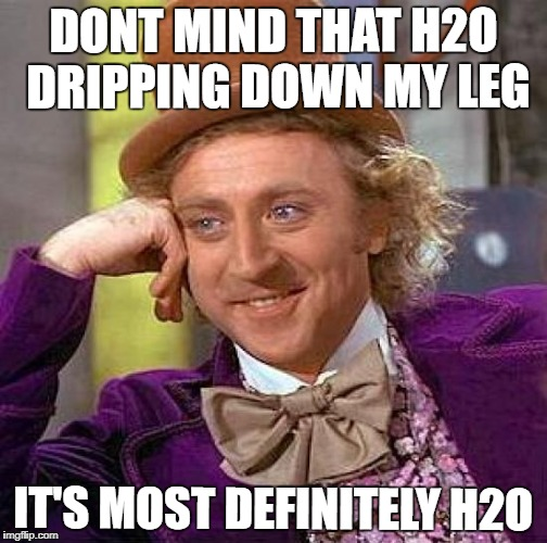 Creepy Condescending Wonka Meme | DONT MIND THAT H2O DRIPPING DOWN MY LEG IT'S MOST DEFINITELY H2O | image tagged in memes,creepy condescending wonka | made w/ Imgflip meme maker