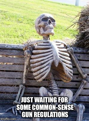 It may take forever | JUST WAITING FOR SOME COMMON-SENSE GUN REGULATIONS | image tagged in memes,waiting skeleton | made w/ Imgflip meme maker