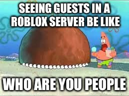 WHO ARE YOU PEOPLE? |  SEEING GUESTS IN A ROBLOX SERVER BE LIKE; WHO ARE YOU PEOPLE | image tagged in who are you people | made w/ Imgflip meme maker