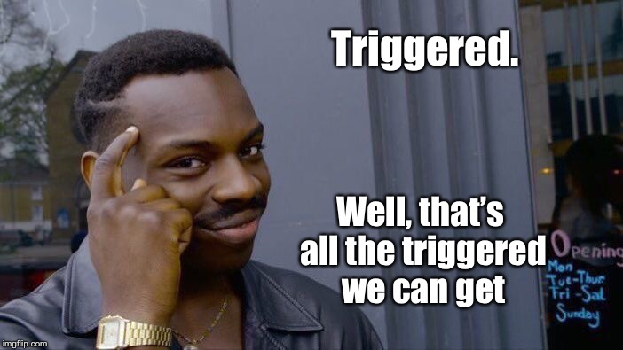 Roll Safe Think About It Meme | Triggered. Well, that's all the triggered we can get | image tagged in memes,roll safe think about it | made w/ Imgflip meme maker