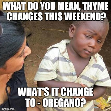 Fling forward | WHAT DO YOU MEAN, THYME CHANGES THIS WEEKEND? WHAT'S IT CHANGE TO - OREGANO? | image tagged in memes,third world skeptical kid,original meme | made w/ Imgflip meme maker