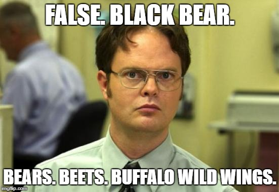 Dwight Schrute Meme | FALSE. BLACK BEAR. BEARS. BEETS. BUFFALO WILD WINGS. | image tagged in memes,dwight schrute | made w/ Imgflip meme maker