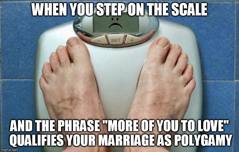 "Scale Sadness | WHEN YOU STEP ON THE SCALE AND THE PHRASE ""MORE OF YOU TO LOVE"" QUALIFIES YOUR MARRIAGE AS POLYGAMY 