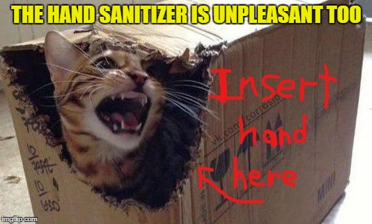 THE HAND SANITIZER IS UNPLEASANT TOO | made w/ Imgflip meme maker