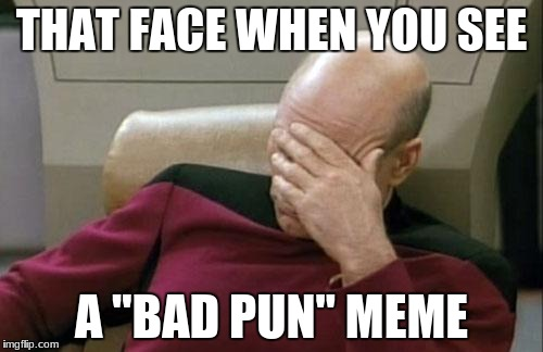 "Captain Picard Facepalm Meme | THAT FACE WHEN YOU SEE A ""BAD PUN"" MEME 