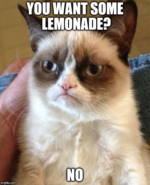 Grumpy Cat Meme | YOU WANT SOME LEMONADE? NO | image tagged in memes,grumpy cat | made w/ Imgflip meme maker