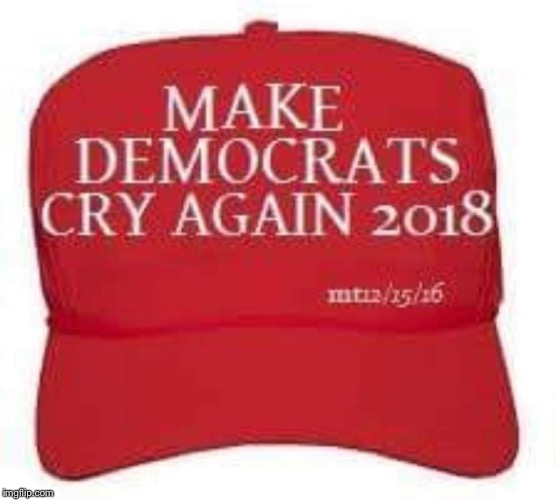 . | image tagged in make democrats cry again,trump,maga | made w/ Imgflip meme maker