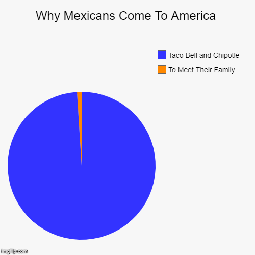 Why Mexicans Come To America | To Meet Their Family, Taco Bell and Chipotle | image tagged in funny,pie charts | made w/ Imgflip pie chart maker