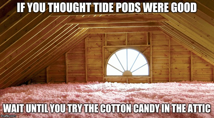 Cotton Candy in the Attic | IF YOU THOUGHT TIDE PODS WERE GOOD WAIT UNTIL YOU TRY THE COTTON CANDY IN THE ATTIC | image tagged in tide pods,cotton candy,attic,insulation,pink | made w/ Imgflip meme maker