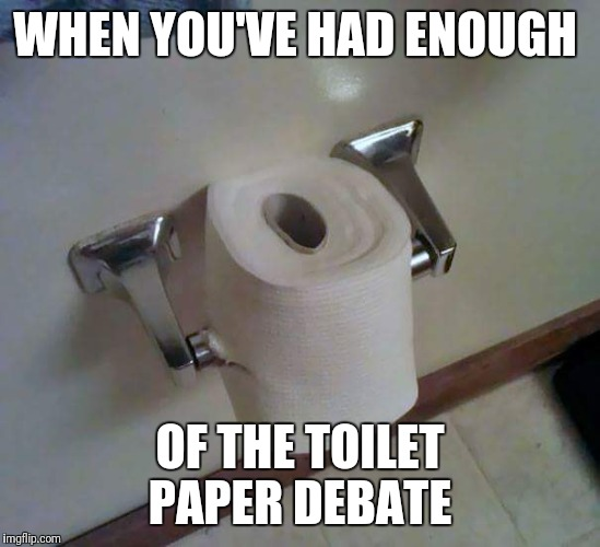 WHEN YOU'VE HAD ENOUGH OF THE TOILET PAPER DEBATE | image tagged in memes | made w/ Imgflip meme maker