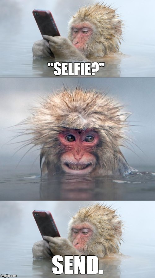 "Experimentation.  A prerequisite for progress. | ""SELFIE?"" SEND. 