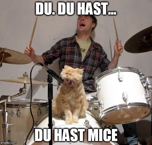 DU. DU HAST... DU HAST MICE | image tagged in singing cat | made w/ Imgflip meme maker
