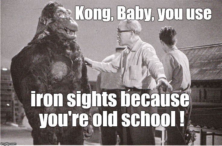 Kong with Director | Kong, Baby, you use iron sights because you're old school ! | image tagged in kong with director | made w/ Imgflip meme maker