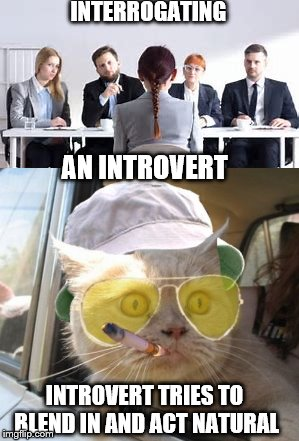 Introverts worst nightmare | INTERROGATING INTROVERT TRIES TO BLEND IN AND ACT NATURAL AN INTROVERT | image tagged in memes,introverts,interview,put on the spot | made w/ Imgflip meme maker