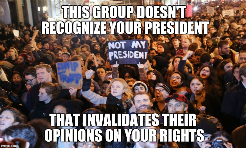 THIS GROUP DOESN'T RECOGNIZE YOUR PRESIDENT THAT INVALIDATES THEIR OPINIONS ON YOUR RIGHTS | image tagged in snowflakes | made w/ Imgflip meme maker
