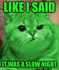 RayCat Annoyed | LIKE I SAID IT WAS A SLOW NIGHT | image tagged in raycat annoyed | made w/ Imgflip meme maker