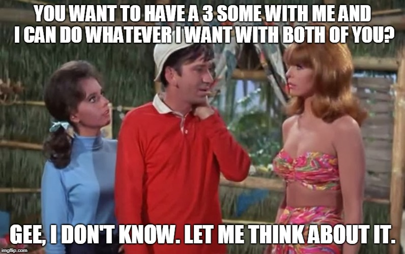 Every Episode of Gilligan's Island From My Shattered Memories | YOU WANT TO HAVE A 3 SOME WITH ME AND I CAN DO WHATEVER I WANT WITH BOTH OF YOU? GEE, I DON'T KNOW. LET ME THINK ABOUT IT. | image tagged in memes,gilligan's island,gilligans island week,threesome,gilligan,ginger | made w/ Imgflip meme maker