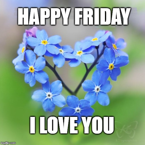 Image Tagged In Happy Fridayi Love Youflowers Imgflip