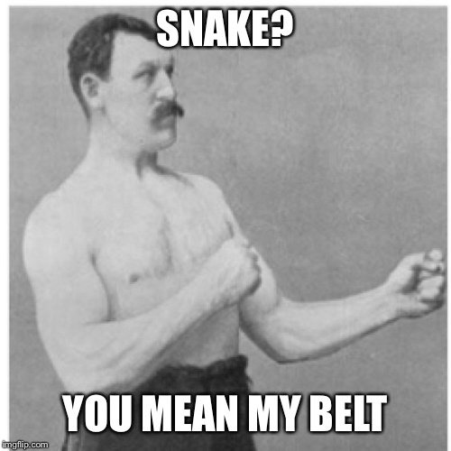 Overly Manly Man Meme | SNAKE? YOU MEAN MY BELT | image tagged in memes,overly manly man,snake,belt,gucci,clothes | made w/ Imgflip meme maker