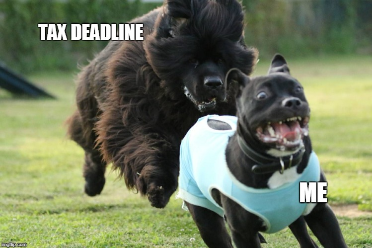 Ugh, that time of year... | TAX DEADLINE ME | image tagged in dog chase,taxes,income taxes,dogs,tax,memes | made w/ Imgflip meme maker