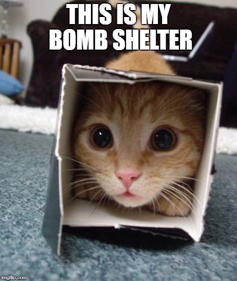 THIS IS MY BOMB SHELTER | made w/ Imgflip meme maker