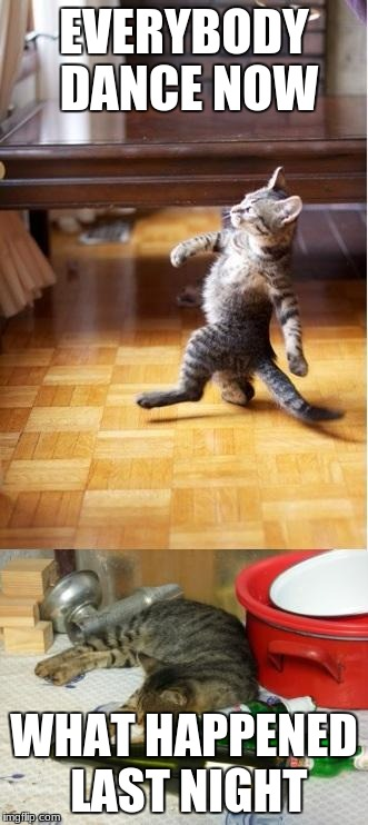 Party cat | EVERYBODY DANCE NOW WHAT HAPPENED LAST NIGHT | image tagged in party cat | made w/ Imgflip meme maker