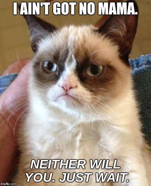 Grumpy Cat Meme | I AIN'T GOT NO MAMA. NEITHER WILL YOU. JUST WAIT. | image tagged in memes,grumpy cat | made w/ Imgflip meme maker