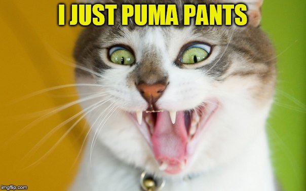 I JUST PUMA PANTS | made w/ Imgflip meme maker