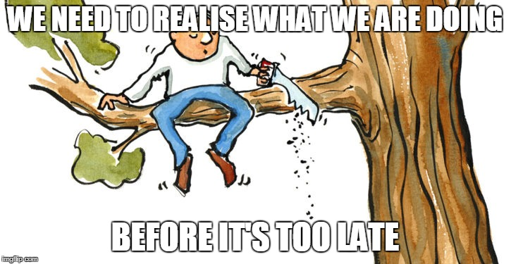 WE NEED TO REALISE WHAT WE ARE DOING BEFORE IT'S TOO LATE | image tagged in deforestation | made w/ Imgflip meme maker