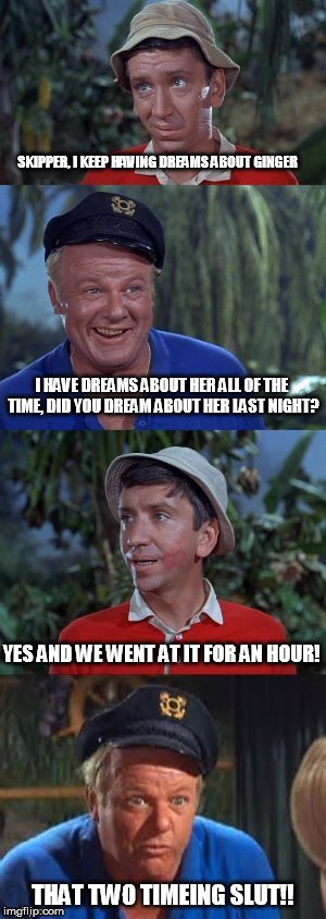 Gilligans's Island | SKIPPER, I KEEP HAVING DREAMS ABOUT GINGER THAT TWO TIMEING S**T!! I HAVE DREAMS ABOUT HER ALL OF THE TIME, DID YOU DREAM ABOUT HER LAST NIG | image tagged in gilligans's island | made w/ Imgflip meme maker