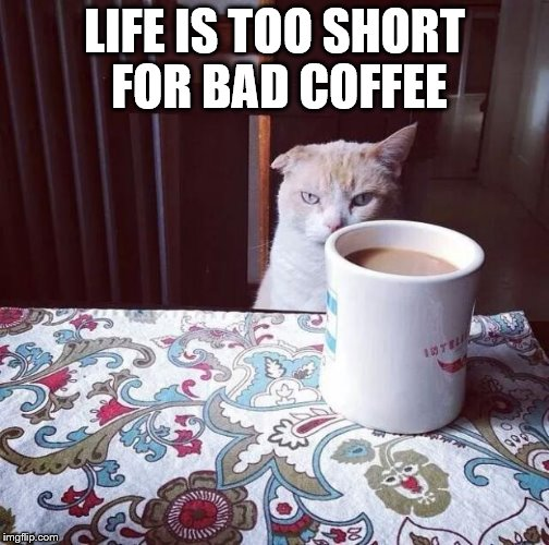 Cat Doesn't Like this Coffee | LIFE IS TOO SHORT FOR BAD COFFEE | image tagged in cat doesn't like this coffee | made w/ Imgflip meme maker