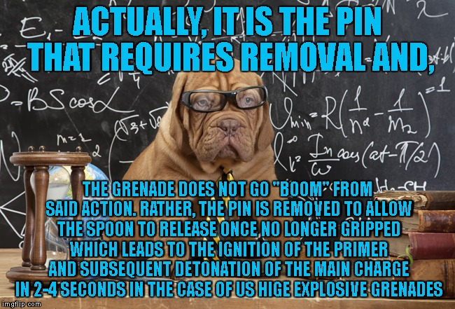 "ACTUALLY, IT IS THE PIN THAT REQUIRES REMOVAL AND, THE GRENADE DOES NOT GO ""BOOM"" FROM SAID ACTION. RATHER, THE PIN IS REMOVED TO ALLOW THE  