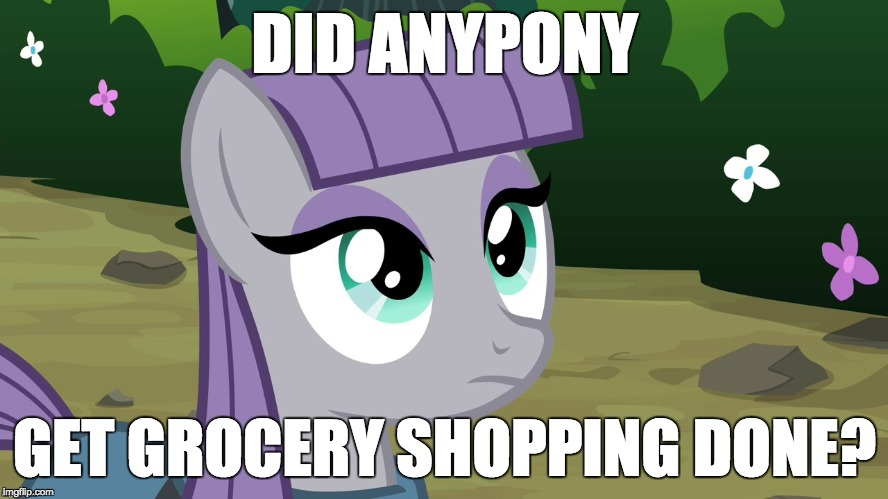 I sure didn't! | DID ANYPONY GET GROCERY SHOPPING DONE? | image tagged in maud is interested,memes,grocery store,shopping | made w/ Imgflip meme maker