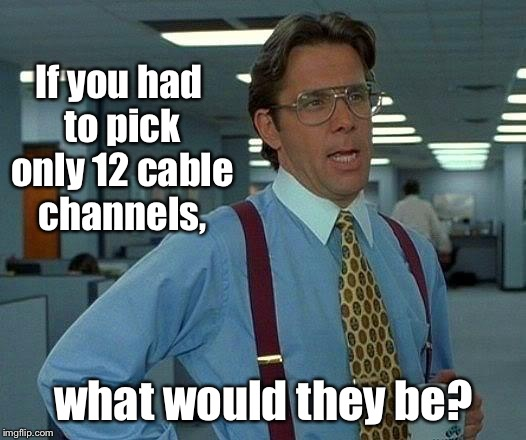 That Would Be Great Meme | If you had to pick only 12 cable channels, what would they be? | image tagged in memes,that would be great | made w/ Imgflip meme maker