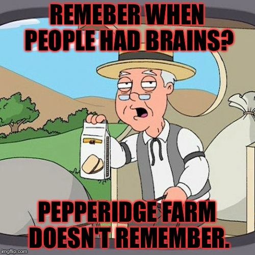 Pepperidge Farm Remembers | REMEBER WHEN PEOPLE HAD BRAINS? PEPPERIDGE FARM DOESN'T REMEMBER. | image tagged in memes,pepperidge farm remembers,meme,idiot,idiots,stupid | made w/ Imgflip meme maker
