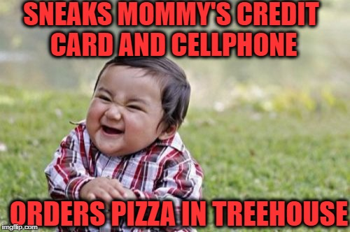 Evil Toddler Meme | SNEAKS MOMMY'S CREDIT CARD AND CELLPHONE ORDERS PIZZA IN TREEHOUSE | image tagged in memes,evil toddler | made w/ Imgflip meme maker