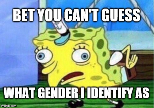 Mocking Spongebob Meme | BET YOU CAN'T GUESS WHAT GENDER I IDENTIFY AS | image tagged in memes,mocking spongebob | made w/ Imgflip meme maker