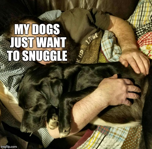 MY DOGS JUST WANT TO SNUGGLE | made w/ Imgflip meme maker