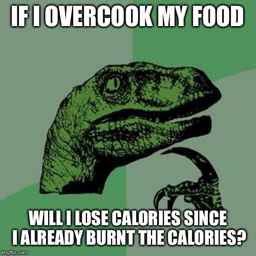 Philosoraptor Meme | IF I OVERCOOK MY FOOD WILL I LOSE CALORIES SINCE I ALREADY BURNT THE CALORIES? | image tagged in memes,philosoraptor | made w/ Imgflip meme maker