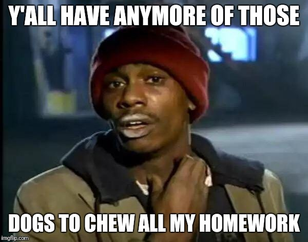 Y'all Got Any More Of That Meme | Y'ALL HAVE ANYMORE OF THOSE DOGS TO CHEW ALL MY HOMEWORK | image tagged in memes,y'all got any more of that | made w/ Imgflip meme maker